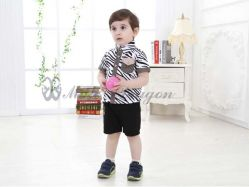 Fashion Boy - BS2162