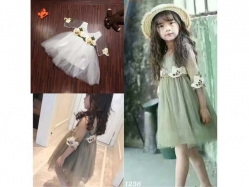 Fashion Dress Trend - GD3733