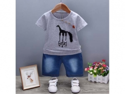 Fashion Boy 012 2L - BS5617
