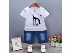 Fashion Boy 012 2O - BS5620