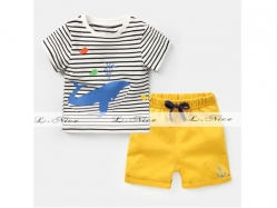 Fashion Boy 144 B - BS6129
