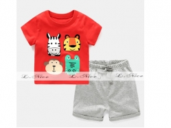 Fashion Boy 144 C - BS6130