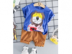 Fashion Boy DG 1L - BS6332