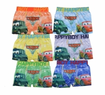 Boxer CD Anak Cars L - PL4266